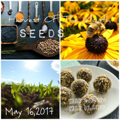 seeds collage by Ritchie Berlus
